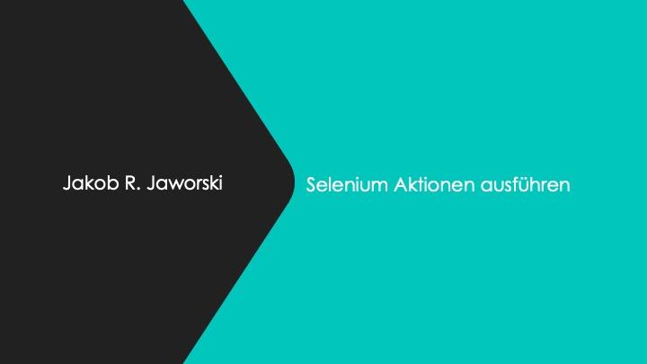selenium-schulung